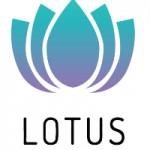 Lotus Pleisterwerken Bv.